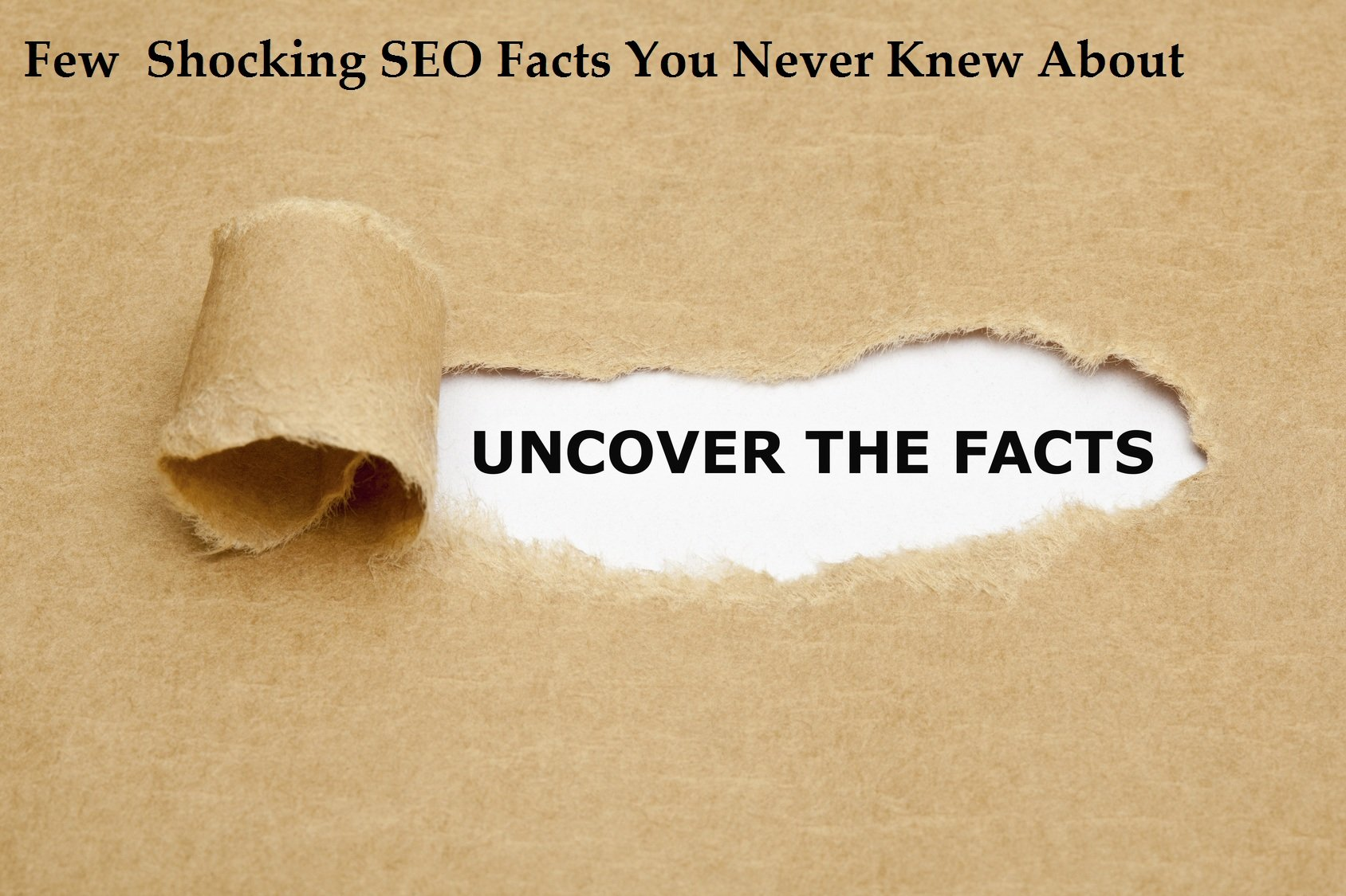 Few Shocking SEO Facts You Never Knew About | Grow Google Ranking