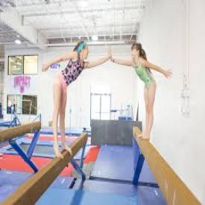 Understanding The Concept Of Recreational Gymnastics